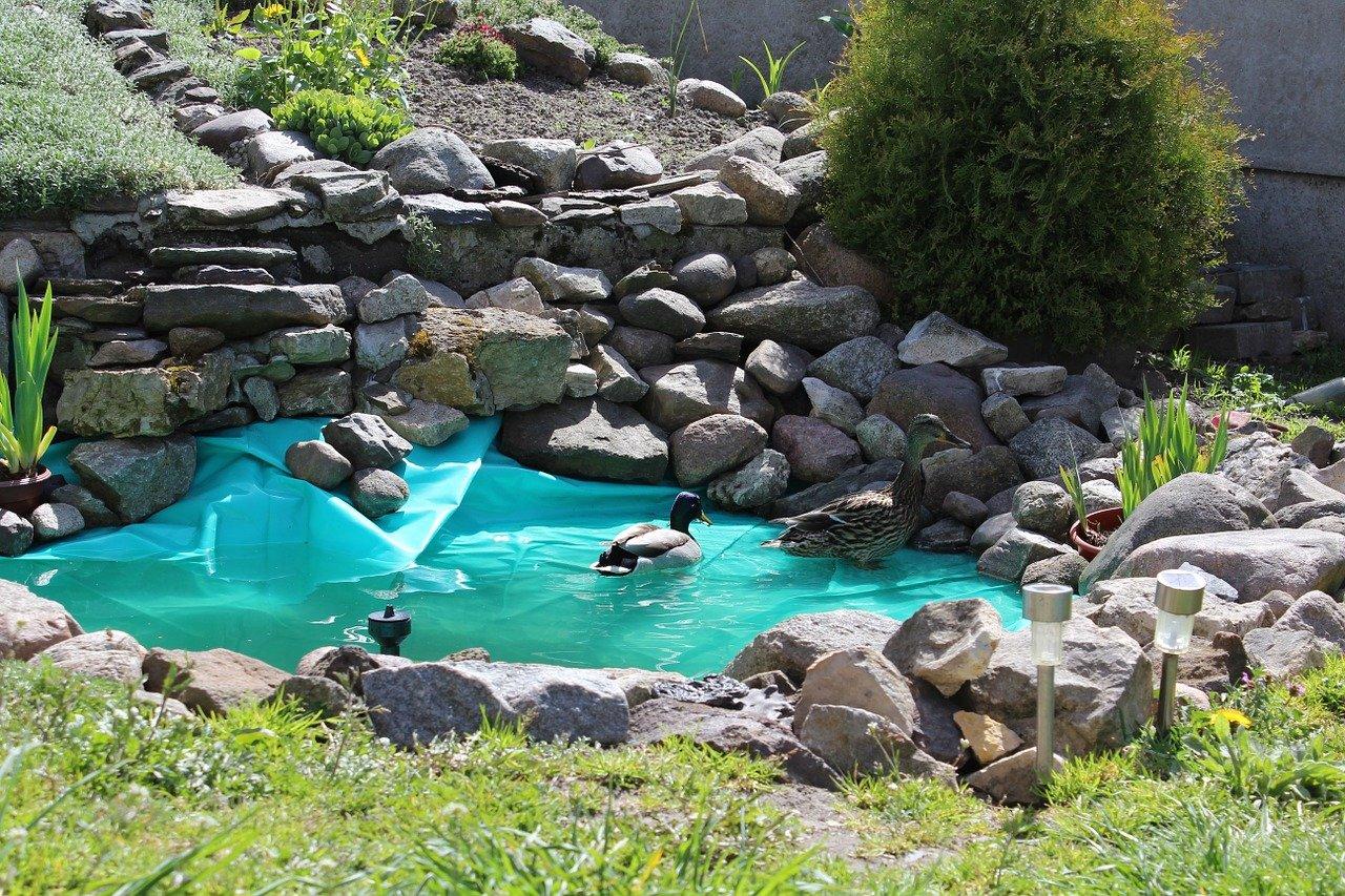 Oczko wodne, kaskada, wodospady w naszym ogrodzie