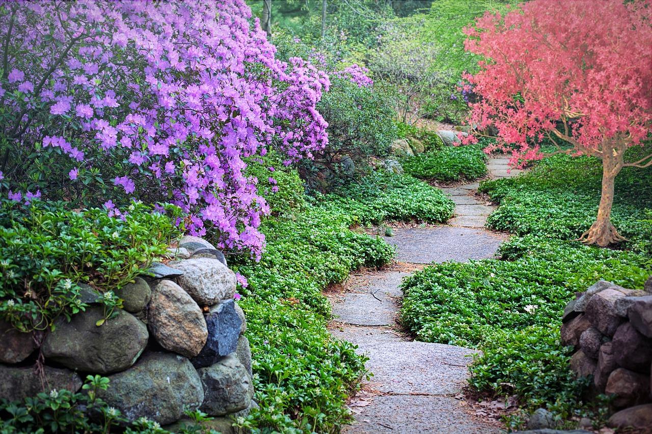 Ścieżki w ogrodzie – praktyczny poradnik